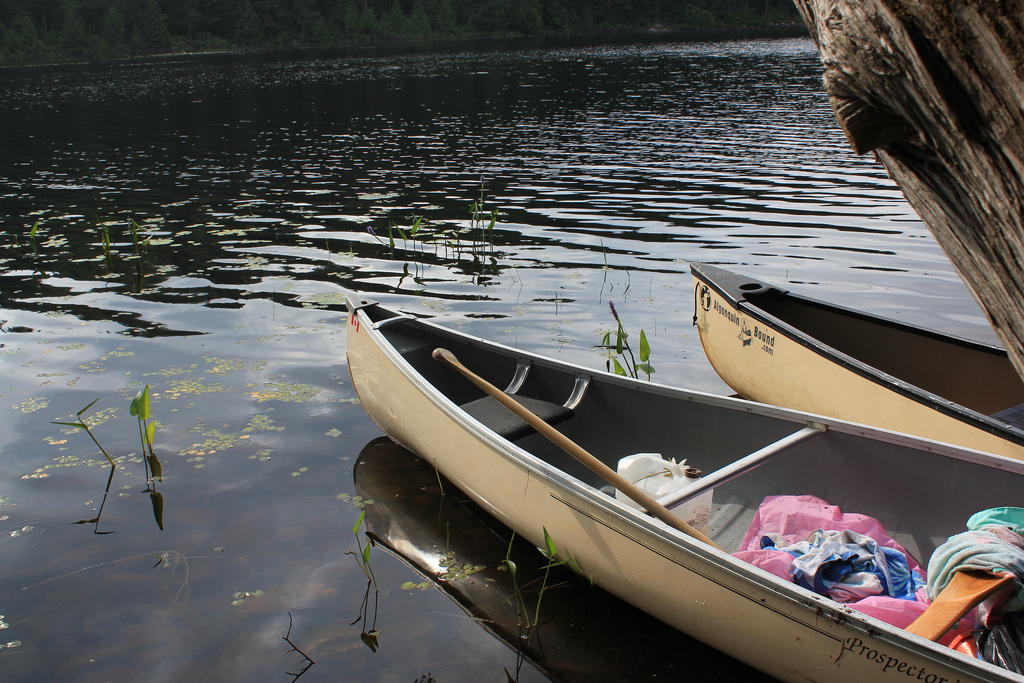 Canoes in Algonquin